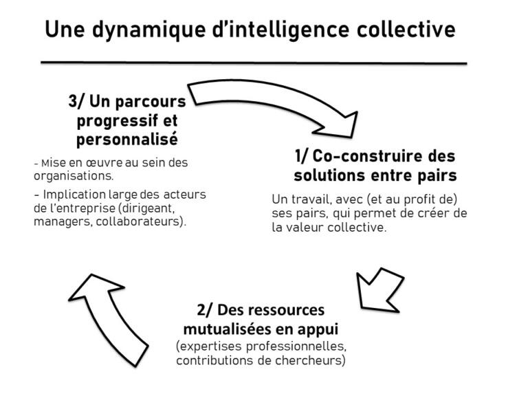 dynamique-intelligence-collective-les-aeh